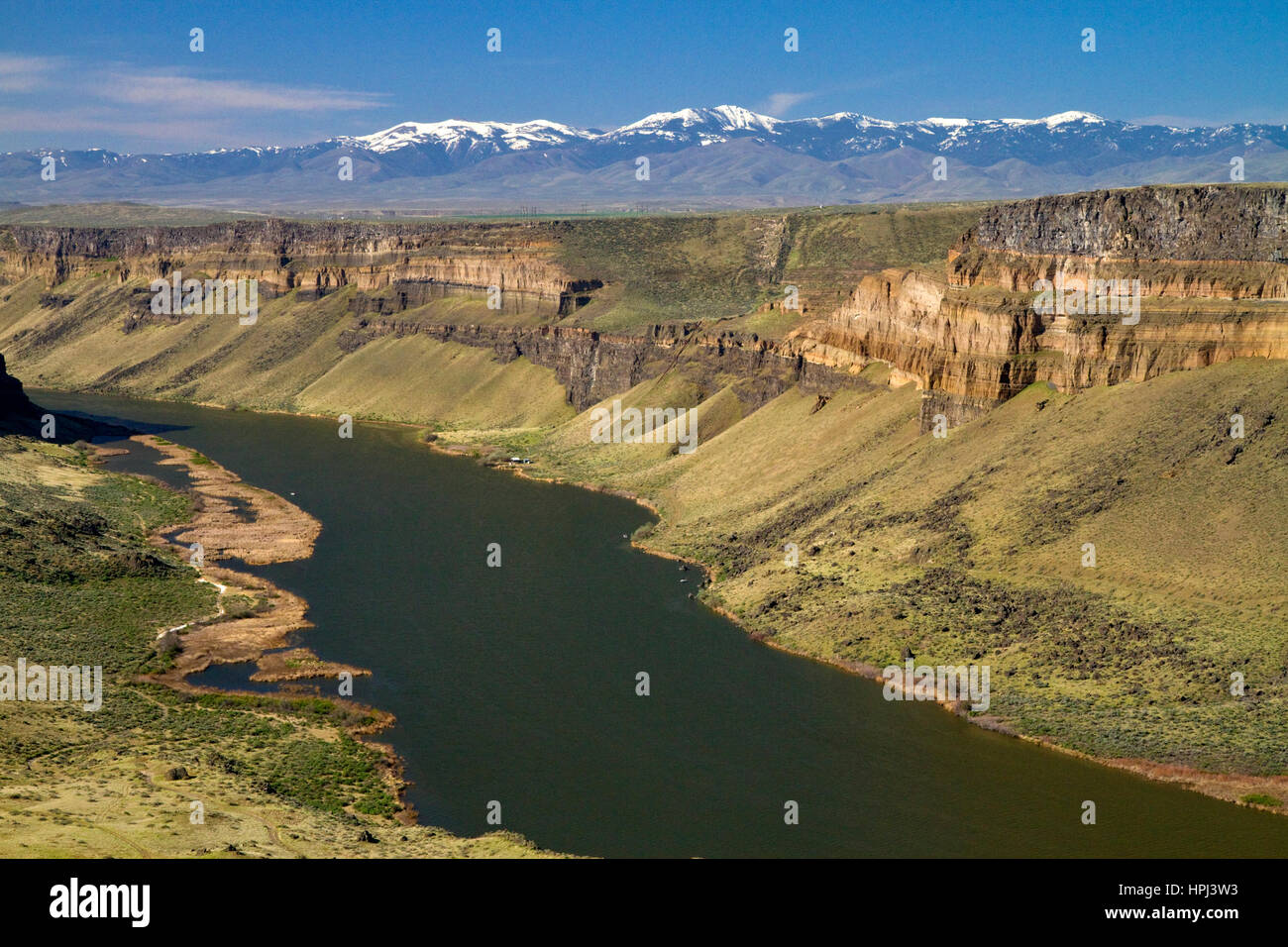 Snake River Canyon am Swan fällt-Damm, Owyhee County, Idaho, USA. Stockfoto
