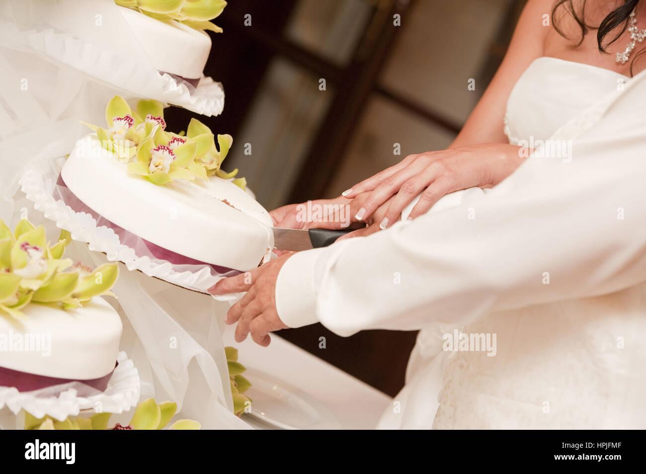 Brautpaar Schneidet Hochzeitstorte Hochzeitstorte Brautpaar