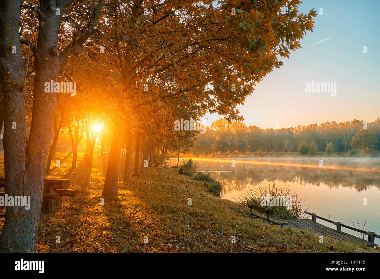 Schönen herbstlichen Wald und See Stockbild