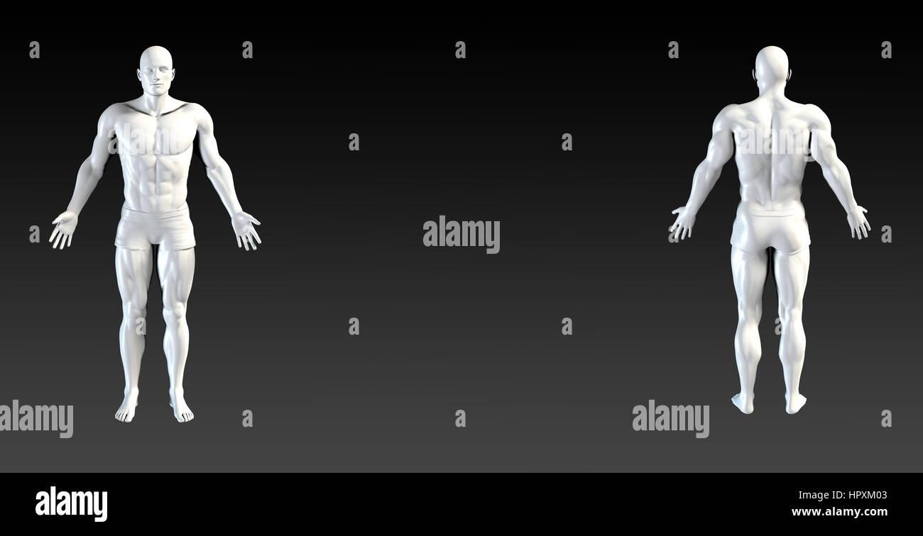Körper-System Präsentation abstrakte Illustrationskunst in 3d ...