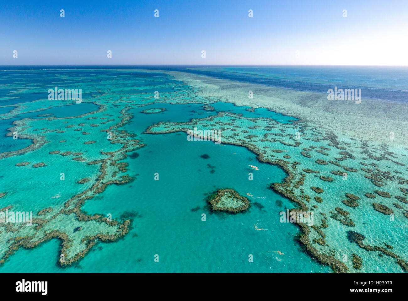 Korallenriff, Heart Reef, Teil von Hardy Reef, Outer Great Barrier Reef, Queensland, Australien Stockbild