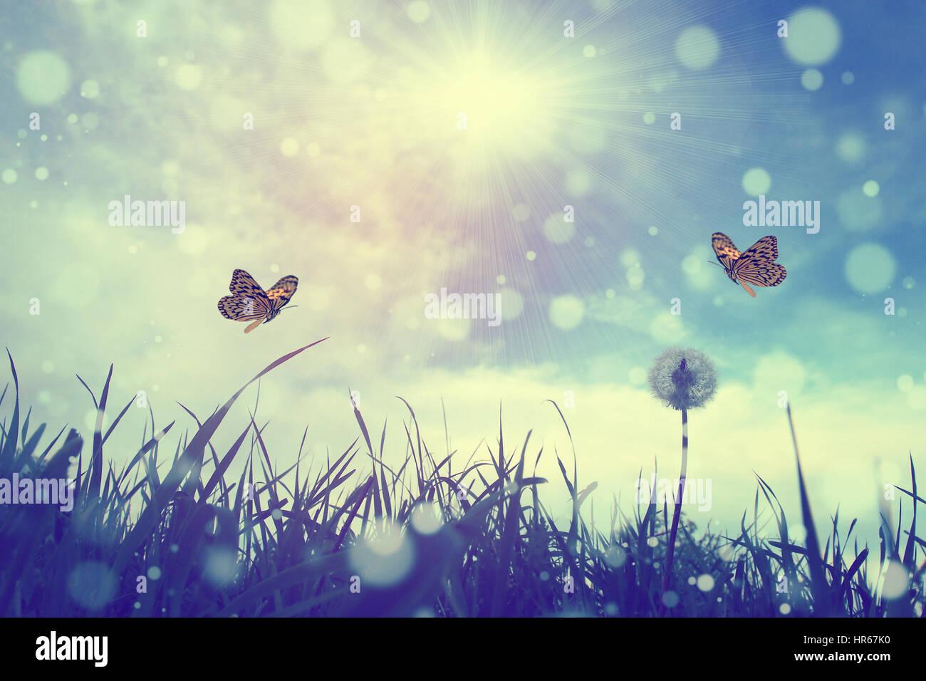Schmetterling und Blume Stockbild