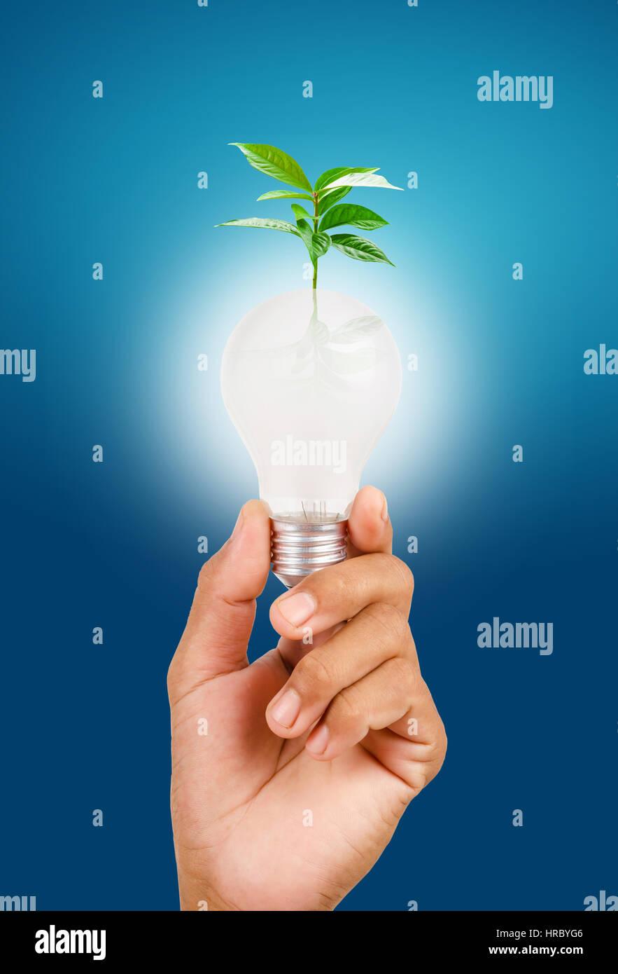 Nachhaltigen Ressourcen, erneuerbare Energien und Umweltschutz-Konzept. Stockbild