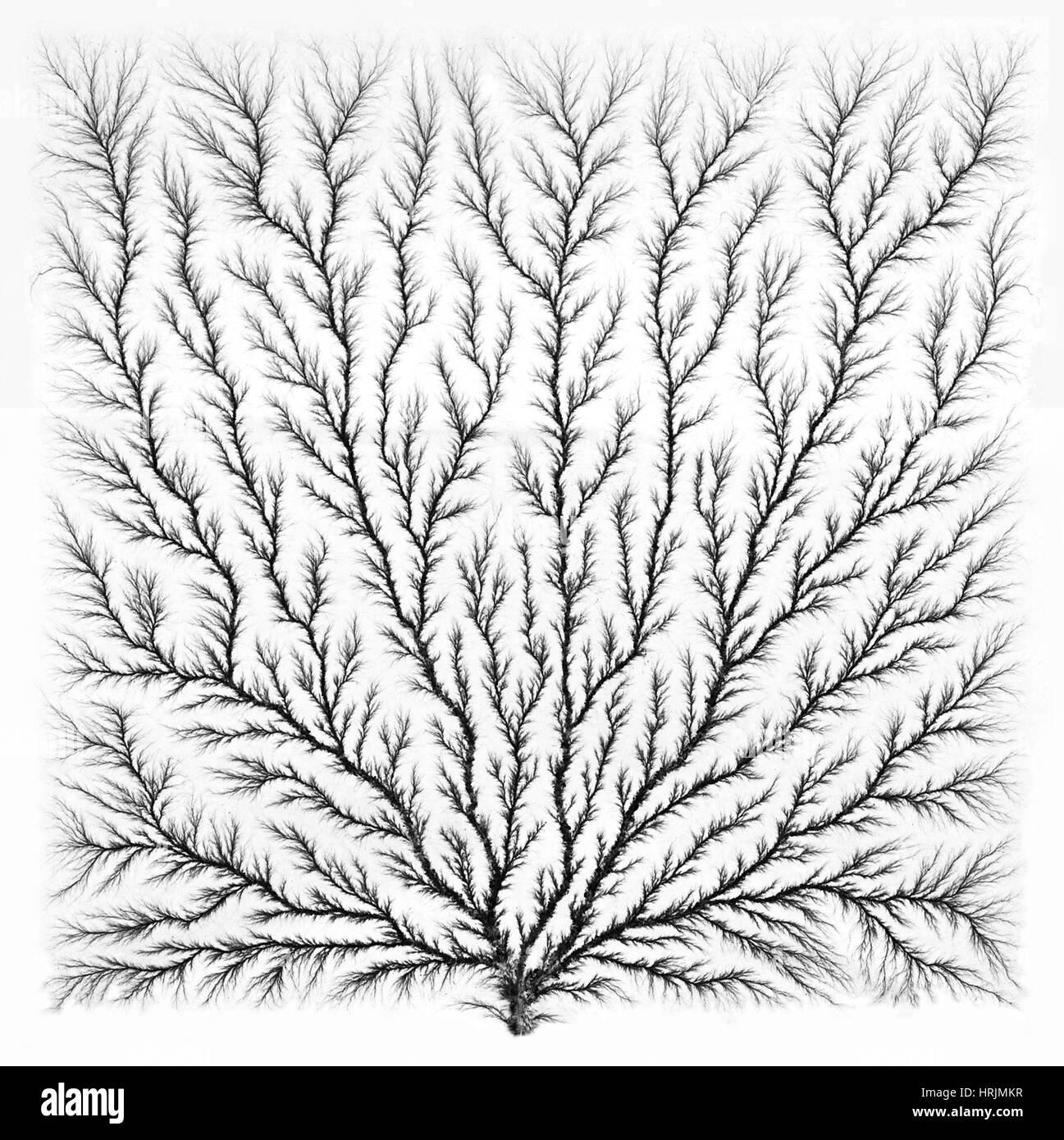 elektron-baum oder lichtenberg figur stockfoto, bild: 135021035 - alamy