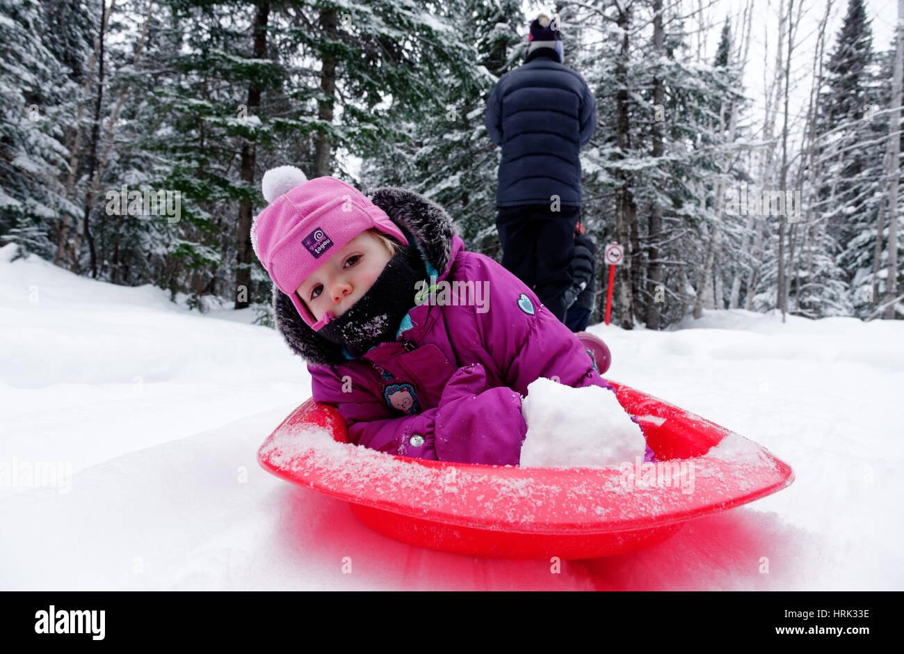 Ein kleines Mädchen (2 Jahre alt) wird von ihrer Mutter in einem Schlitten gezogen Stockbild