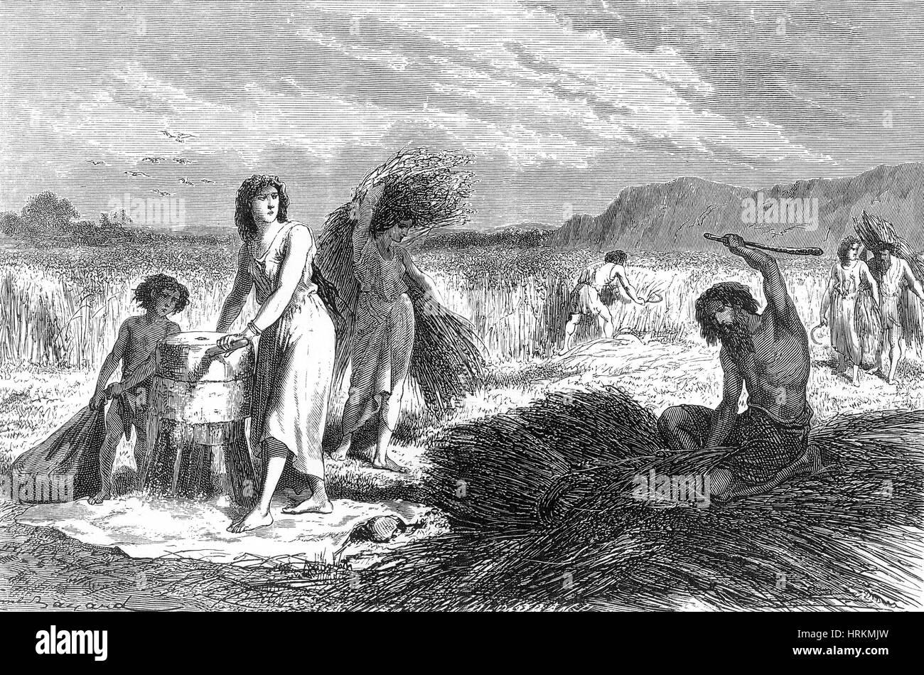 Urmenschen, Eisen Alter Landwirtschaft Stockbild