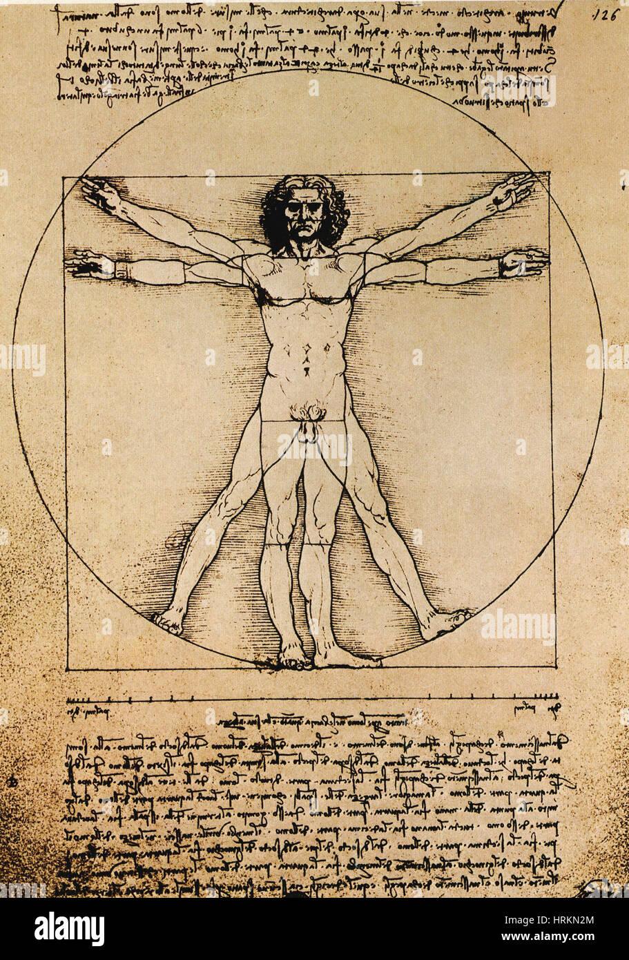 Da Vinci Rechtsstaatlichkeit Proportionen Stockbild