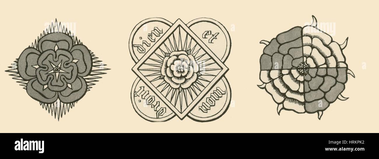Rose Illustrationen von Parkers Annales von England Stockbild