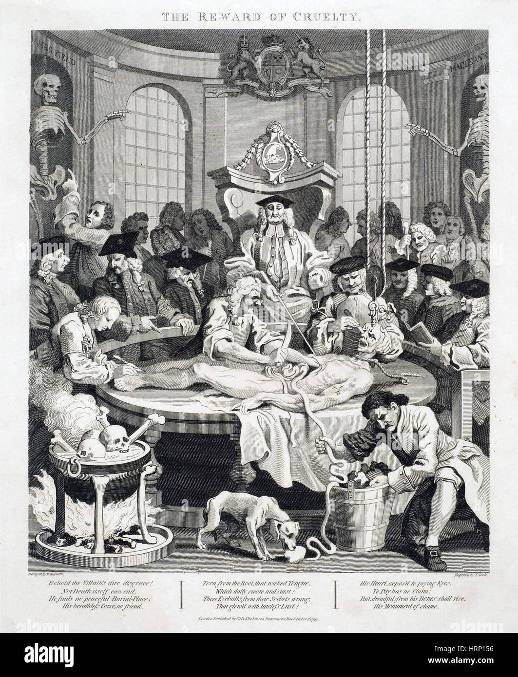 Anatomie-Klasse Dissektion, 18. Jahrhundert Stockfoto, Bild ...