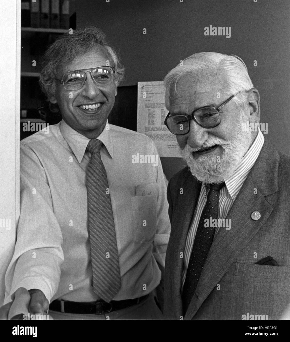 Robert Gallo und Albert Sabin, 1985 Stockbild