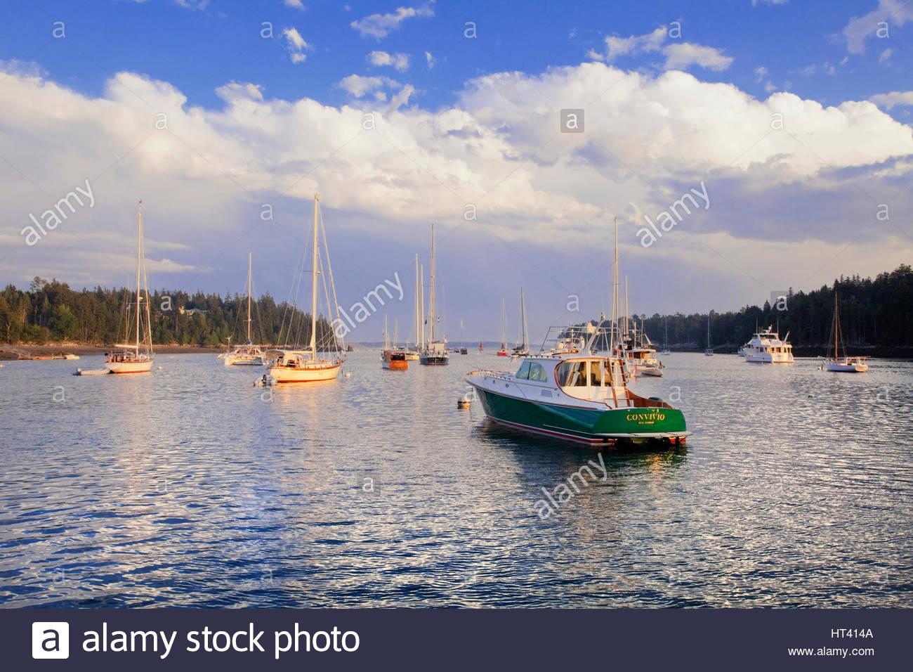 0902-1010 vertäute Boote in Northeast Harbor, Maine. Stockbild