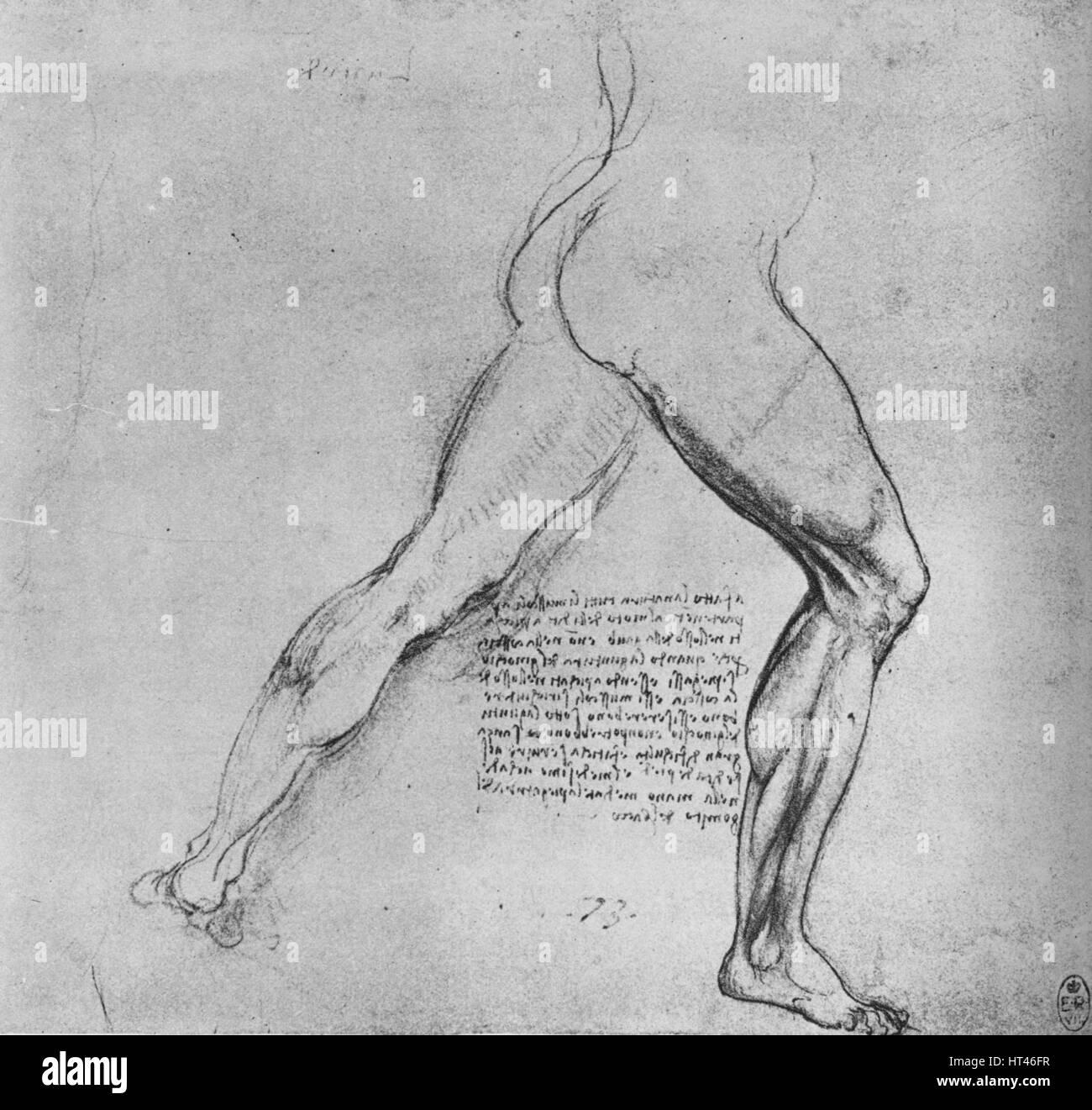 Ausgezeichnet Anatomie Studien Für Künstler Ideen - Anatomie Ideen ...