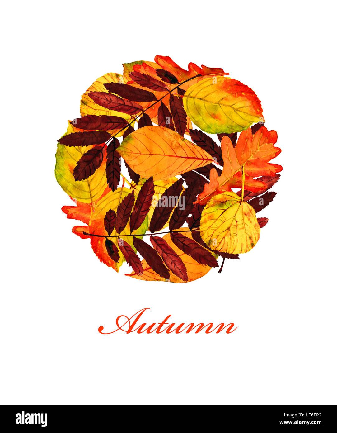 Banner mit bunten Blätter im dekorativen Stil und Text \