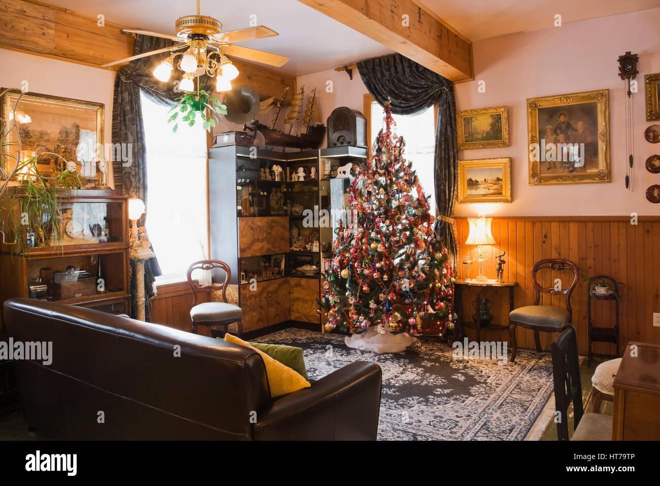 Weihnachtsbaum im Wohnzimmer eines 1904 Altes Haus im ...