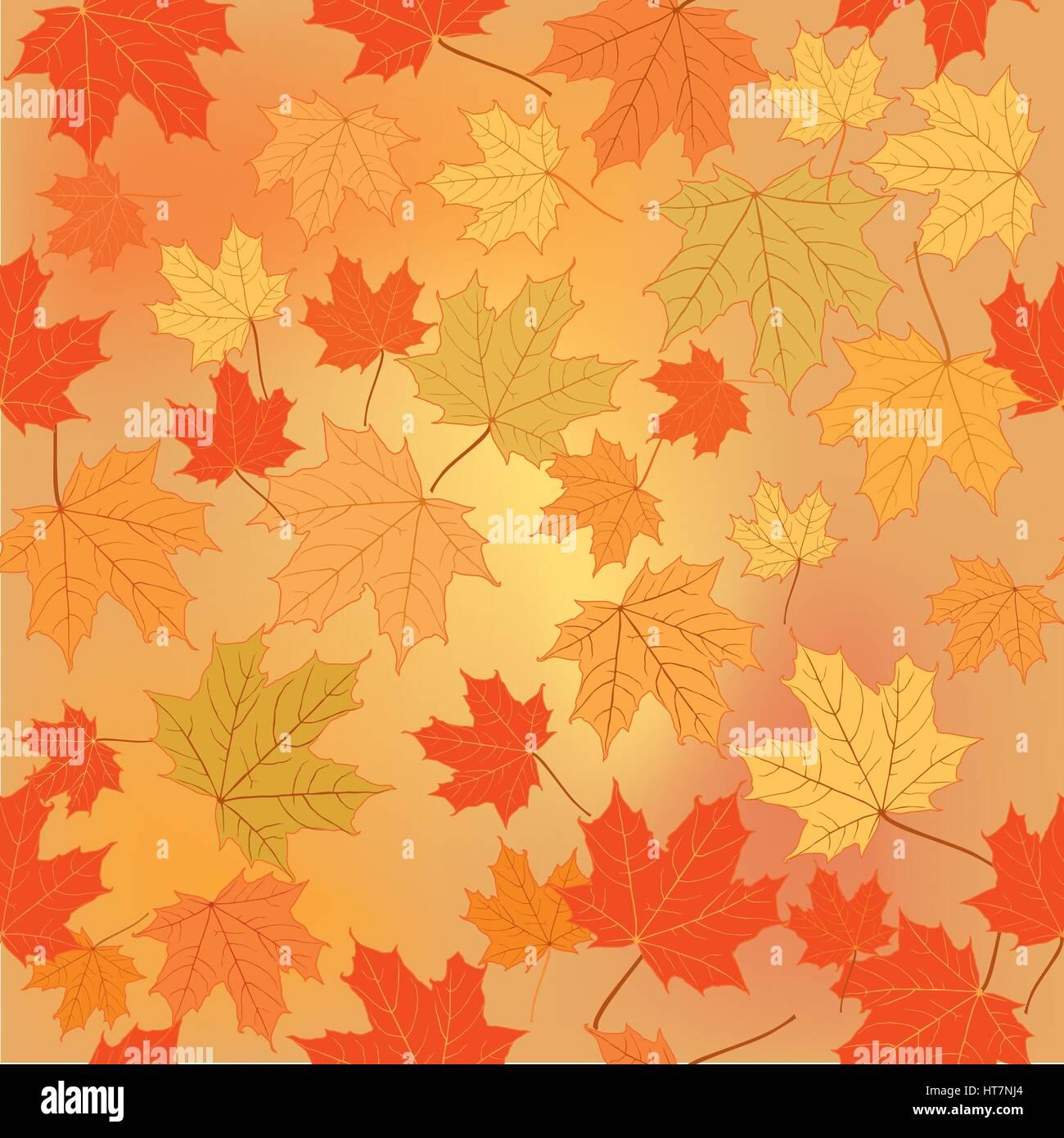 Herbst Blatt Natur Herbstlaub Hintergrund Jahreszeit floralen Muster ...