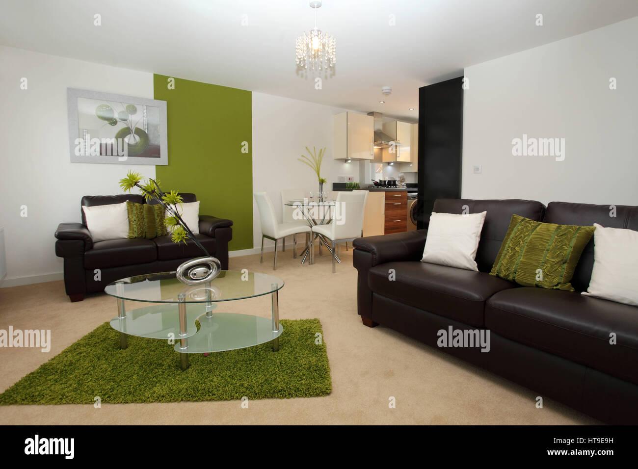 Wohnung Interieur, Moderne Lounge/Küche/Esszimmer, Wohnzimmer, Raum,  Essbereich, Grünen Teppich, Couchtisch Aus Glas,