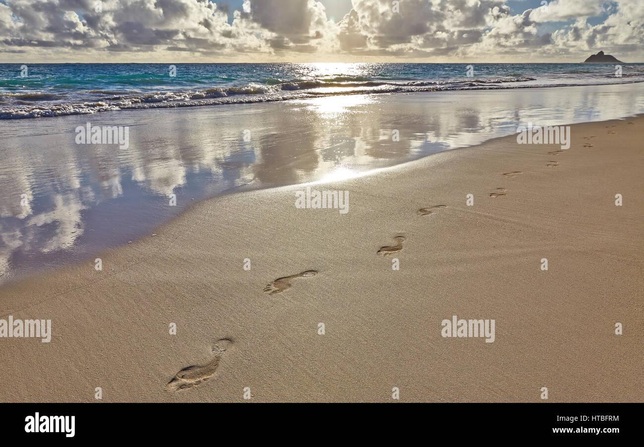 fu abdr cke und spuren im sand an einem tropischen strand. Black Bedroom Furniture Sets. Home Design Ideas