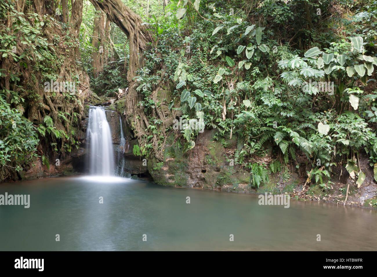 Tropenwald-Wasserfall im Xandari resort Stockbild