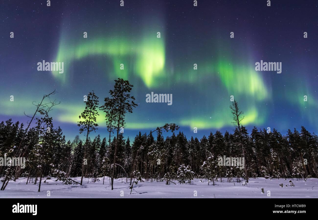 Verschneiten Nacht in Finnland Stockbild