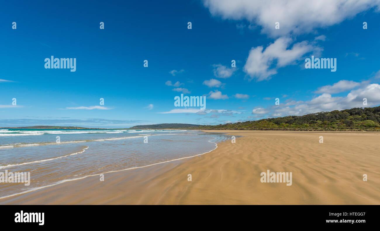 Sandstrand Tautuku Bay, die Catlins, Süden Region, Southland, Neuseeland Stockbild