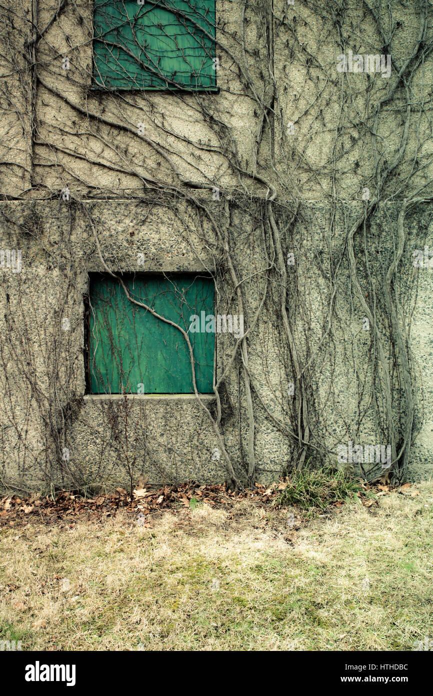 Blick auf äußere des verlassenen psychiatrischen Krankenhaus Stockbild