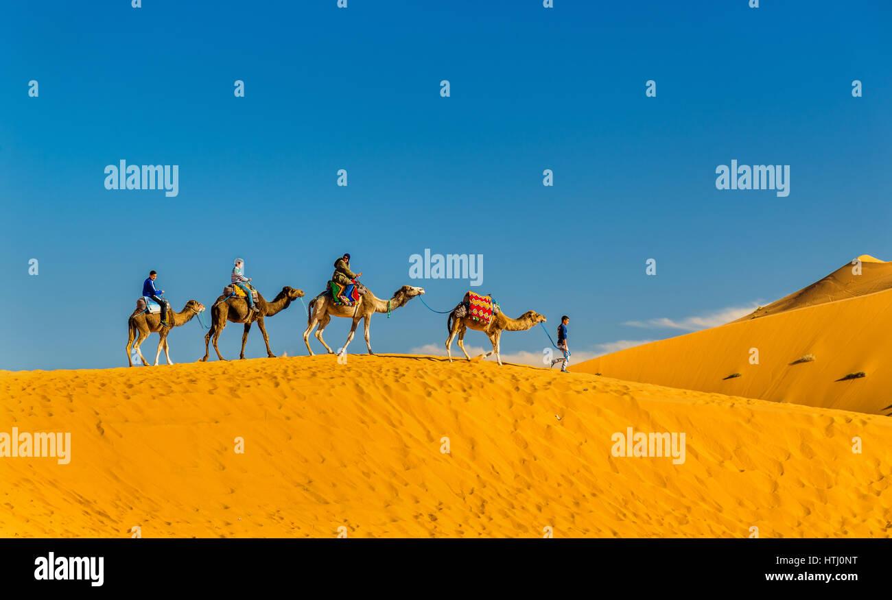Touristen, Kamelreiten am Erg Chebbi in der Nähe von Merzouga in Marokko. Sahara, Afrika Stockfoto