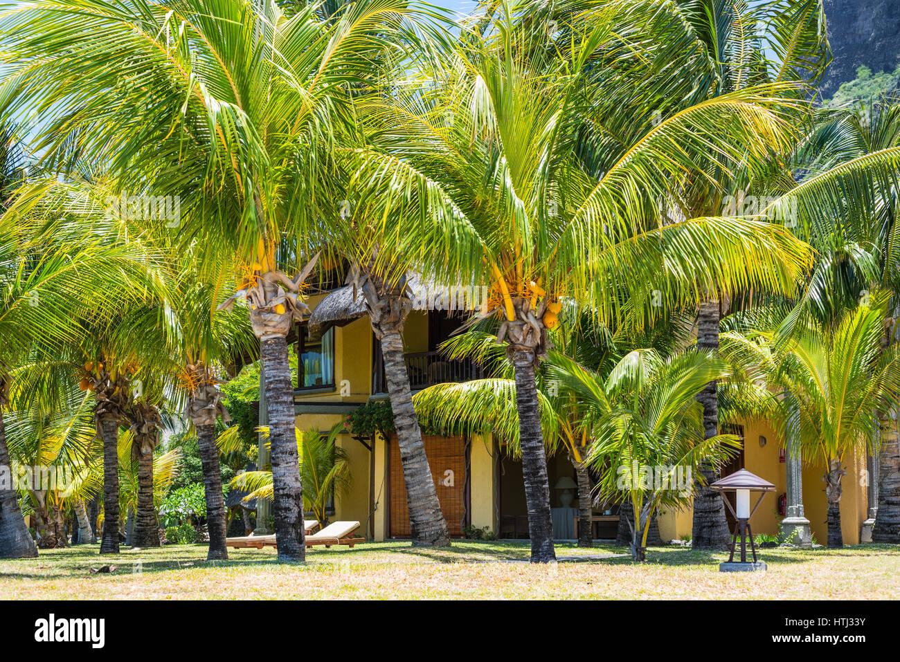 Le Morne Mauritius 11 Dezember 2015 Tropischer Bungalow Am