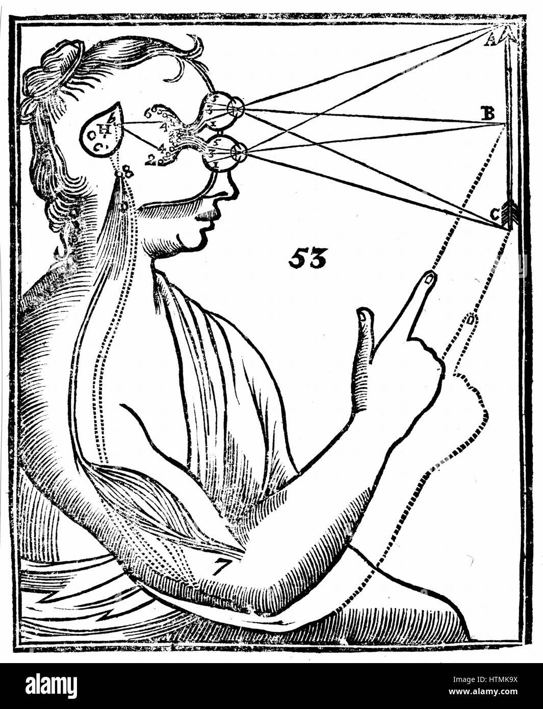 Descartes Idee, Vision, Durchgang von nervösen Impulse aus dem Auge ...