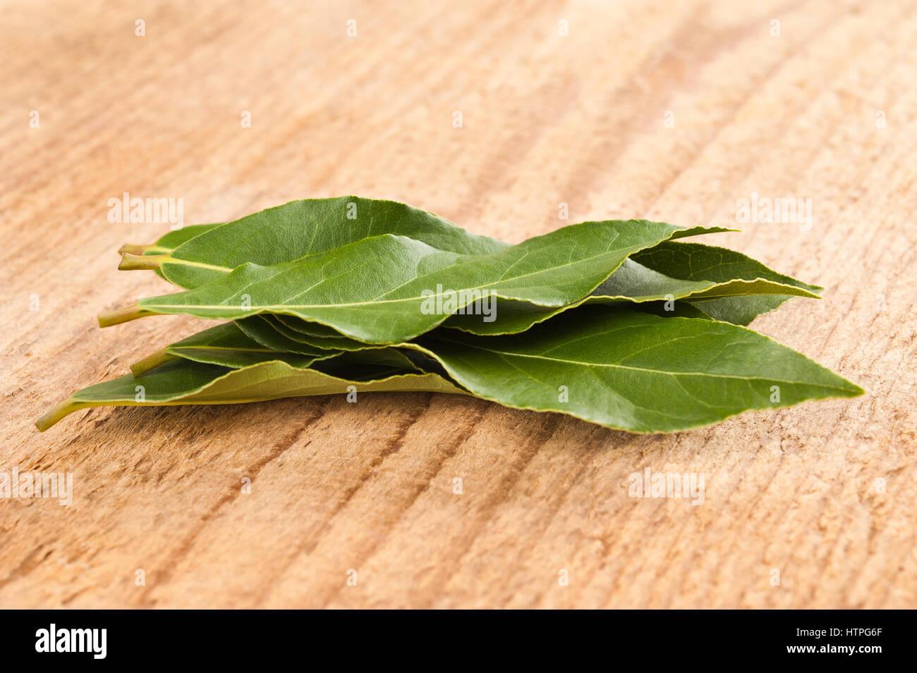 Lorbeer Blätter auf Holz Hintergrund Stockbild