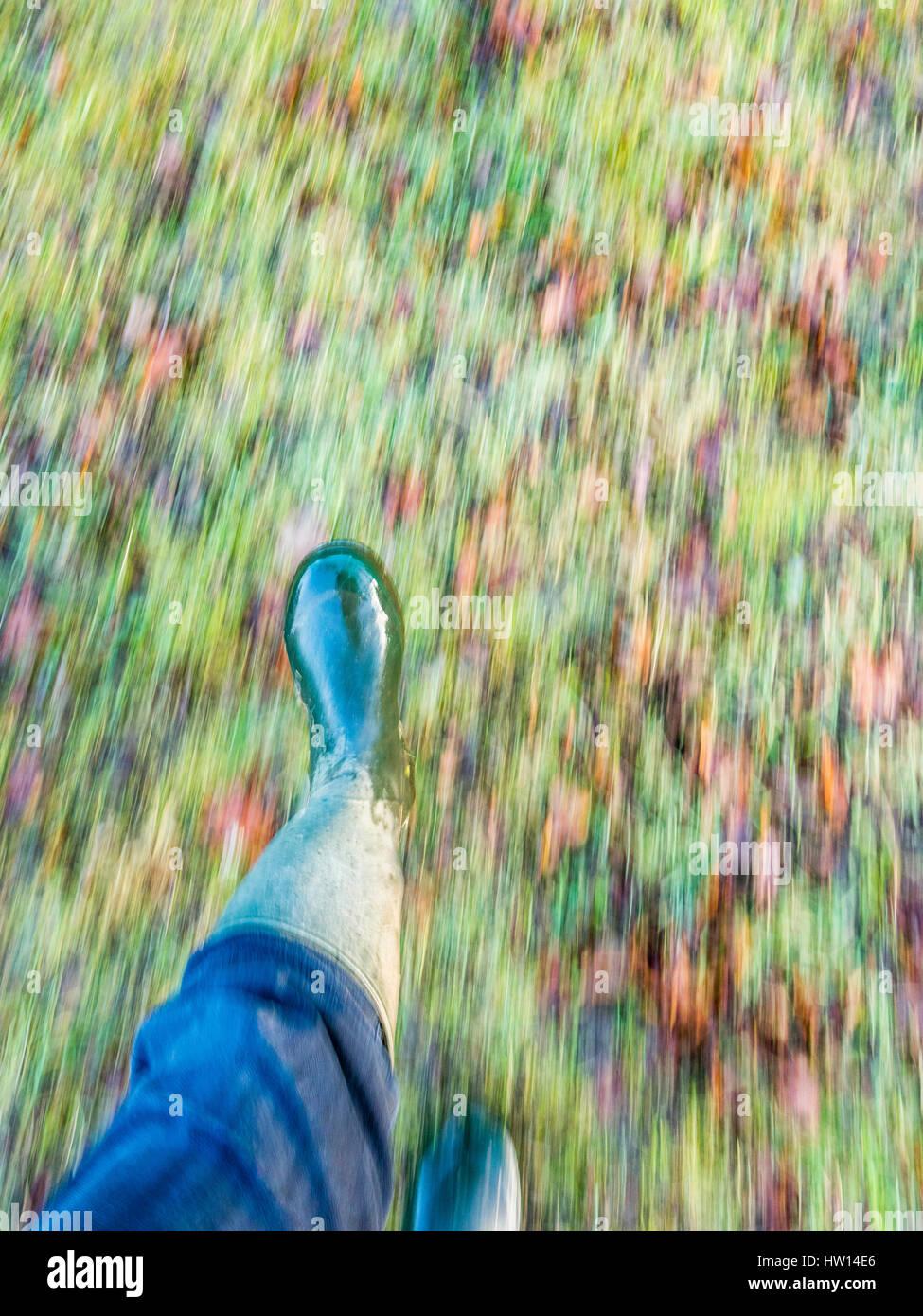 Zu Fuß Füße im Herbst. Füße in Gummistiefeln auf einem Hintergrund Laub-Unschärfe Stockbild