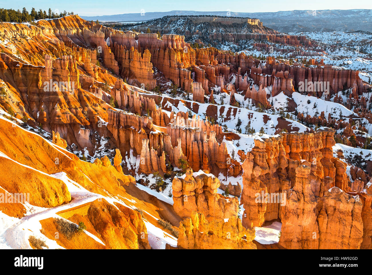 Bryce Canyon National Park im Winter, Utah Stockbild