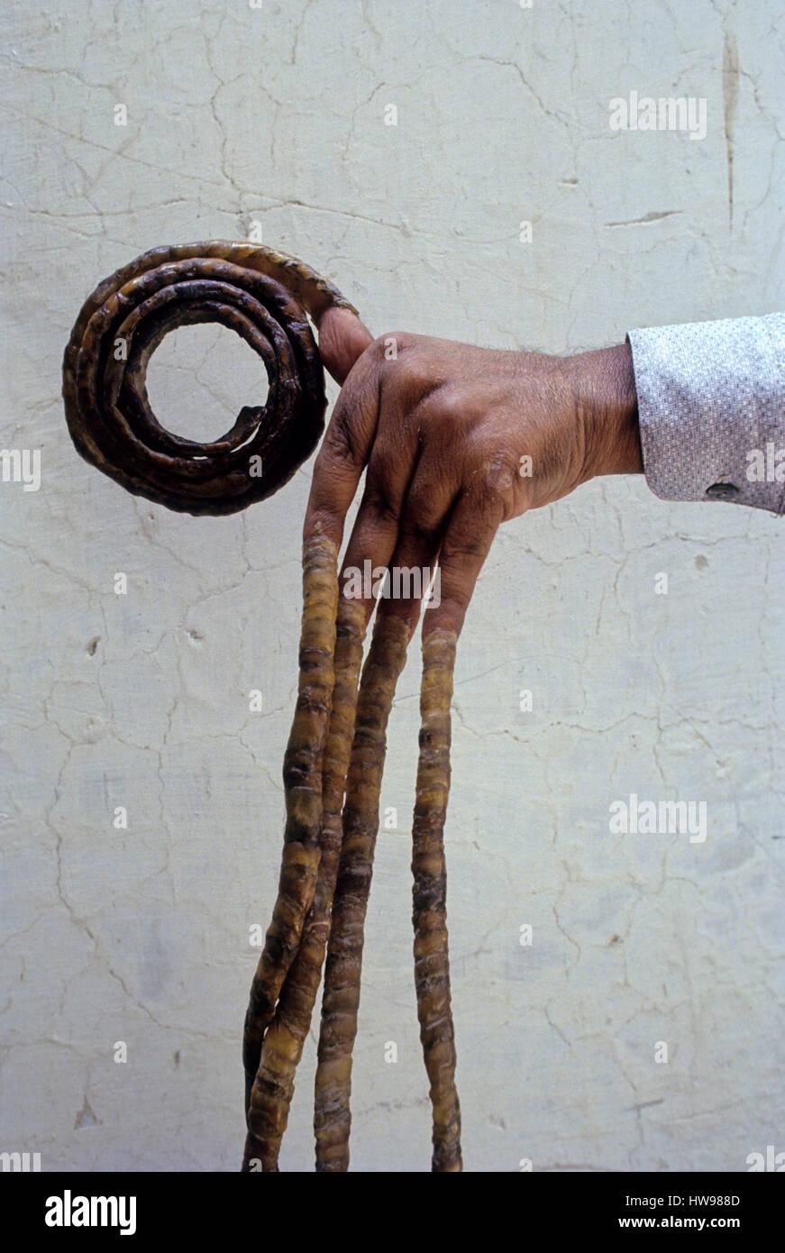 längste Fingernägel Weltrekord Indien Stockfoto, Bild: 136043053 - Alamy