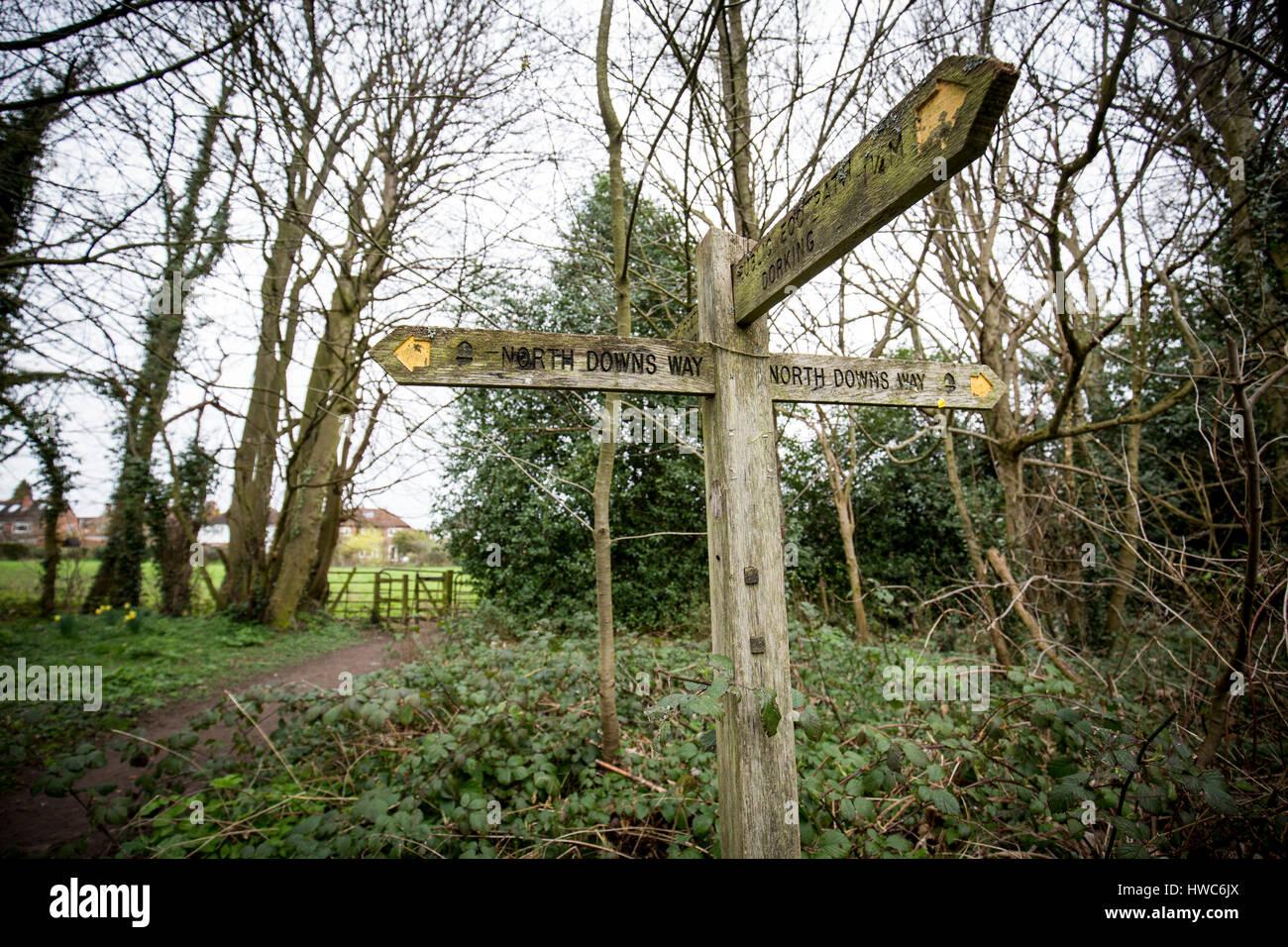 Wanderweg Zeichen auf der North Downs Way in der Nähe von Dorking, Surrey, UK Stockbild