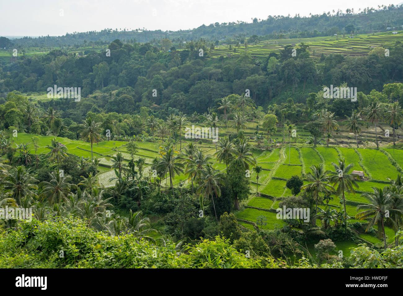 Blick vom Senaru, Lombok, Indonesien Stockbild
