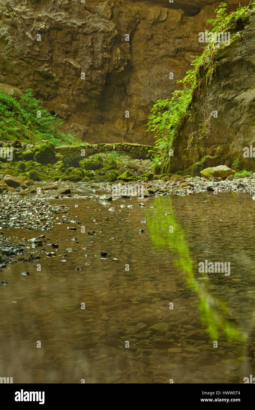 Eine Steinbrücke in einem üppigen Tal in Rakov ?kocjan in Slowenien. Stockbild