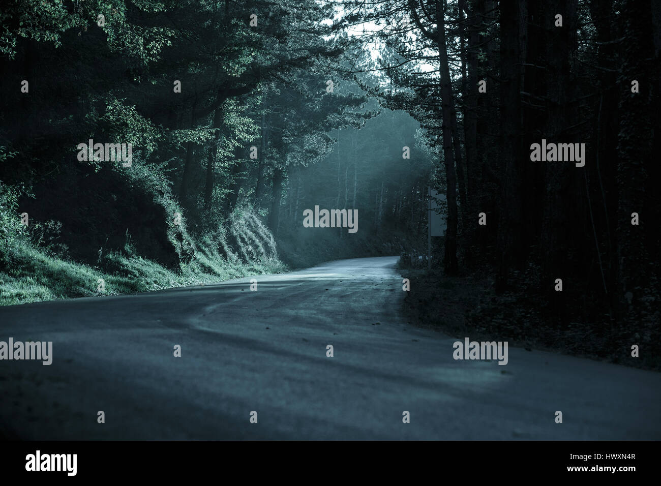 Dunklen Wald mit leeren Straße in fliehendes Licht. Emotionale, gotischen Hintergrund, unheimliche natürliche Stockbild