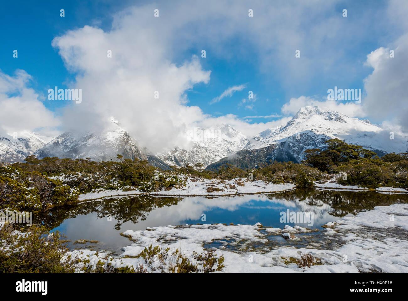 Schnee am Gipfel des Mt. Christina, Fjordland National Park, Westküste, Key Summit, Southland, Neuseeland Stockbild