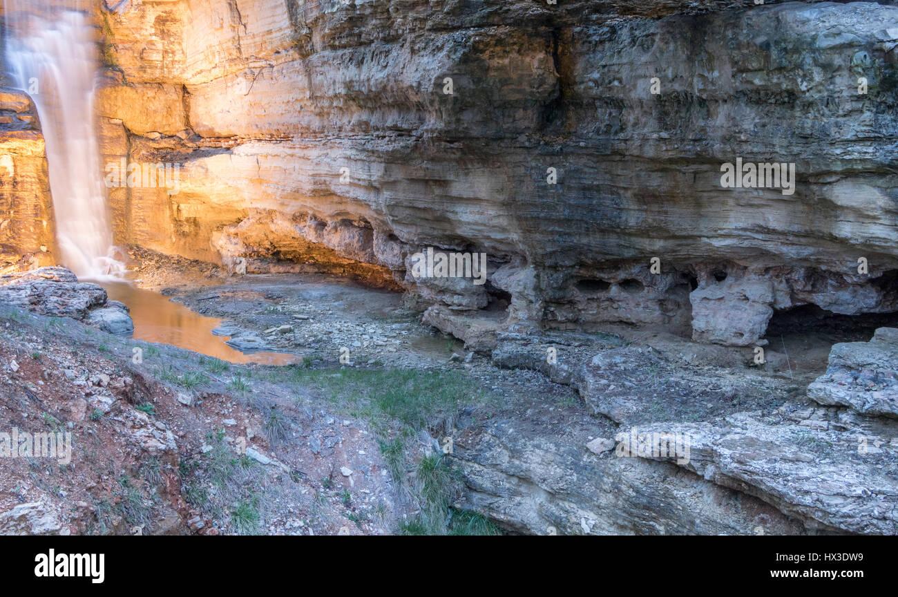 Ich habe diese Bilder, wenn ich in großen Cedar Lodge wohnte. Stockbild