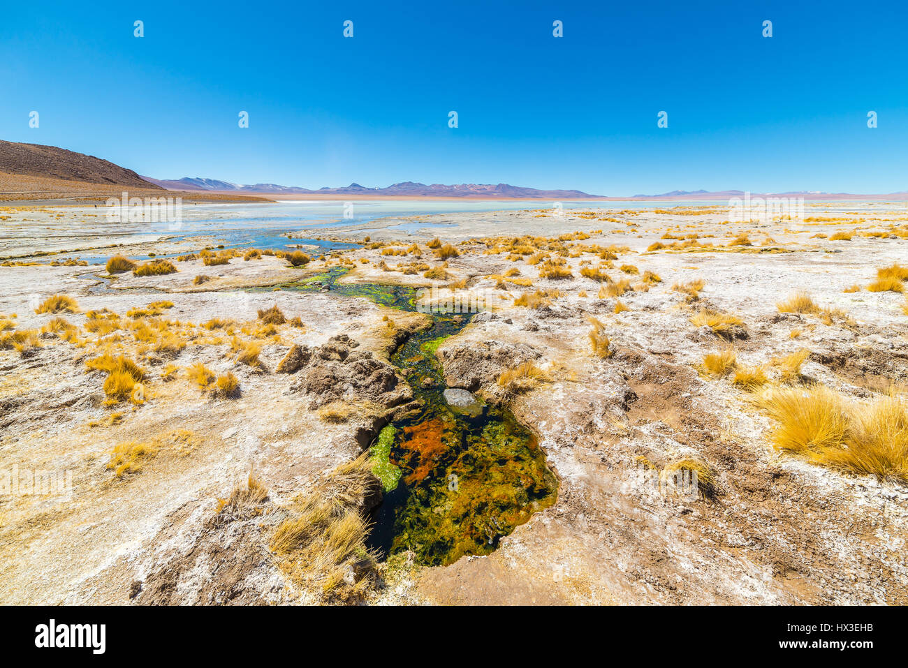 Bunte Sprudel mit Ablagerungen von Mineralien und Algen auf das Hochland der Anden, Bolivien. Salz-See, Gebirge Stockbild