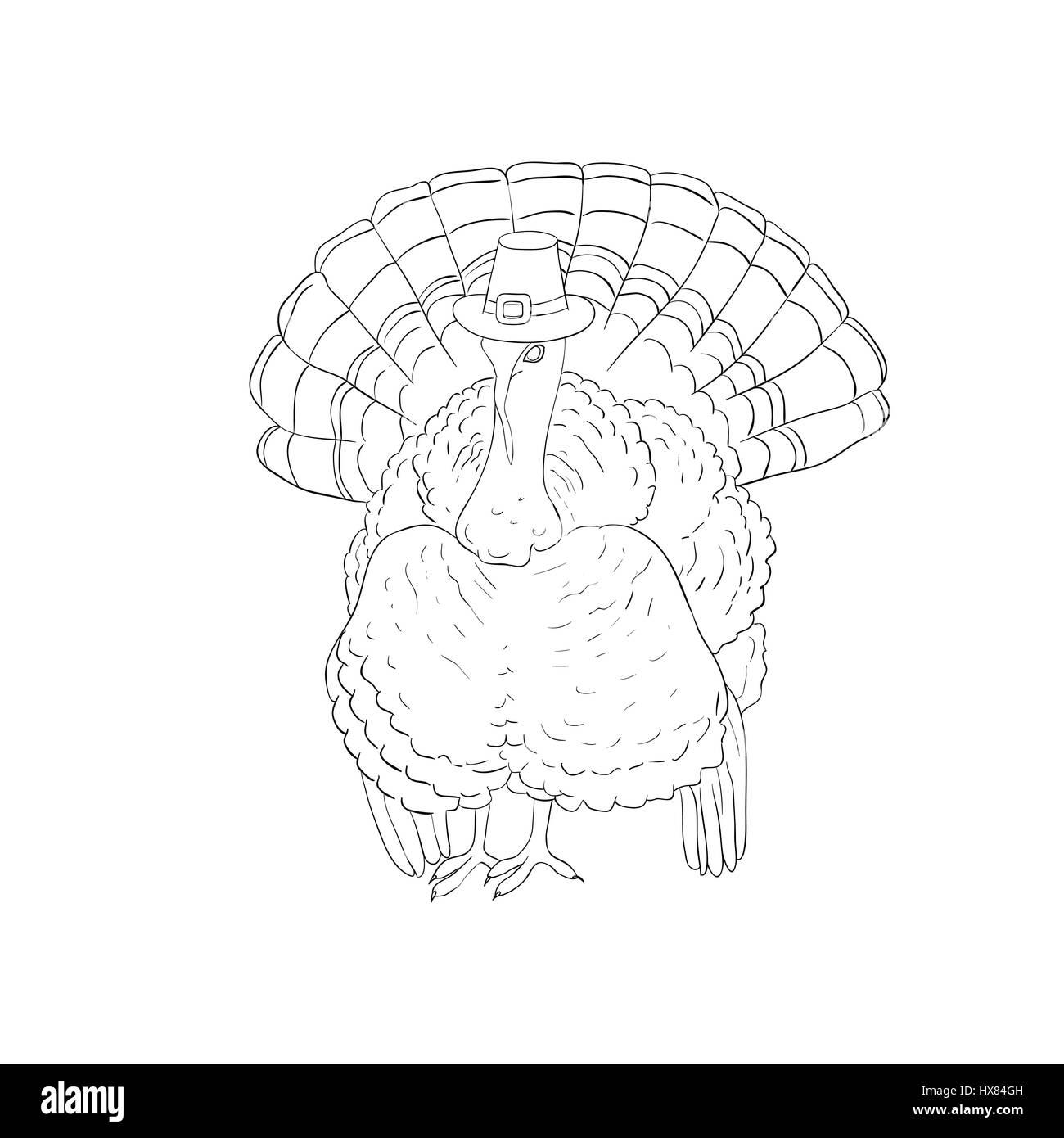 Großzügig Thanksgiving Türkei Färbung Bilder Ideen - Entry Level ...