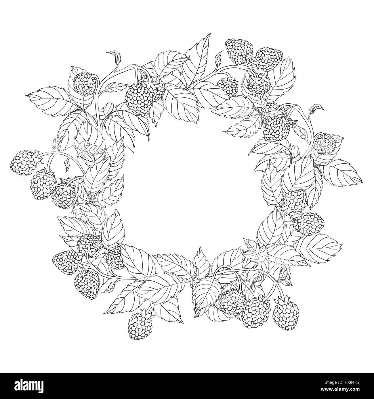 Runde Kranz oder Rahmen von Himbeere mit Blätter und Beeren auf ...