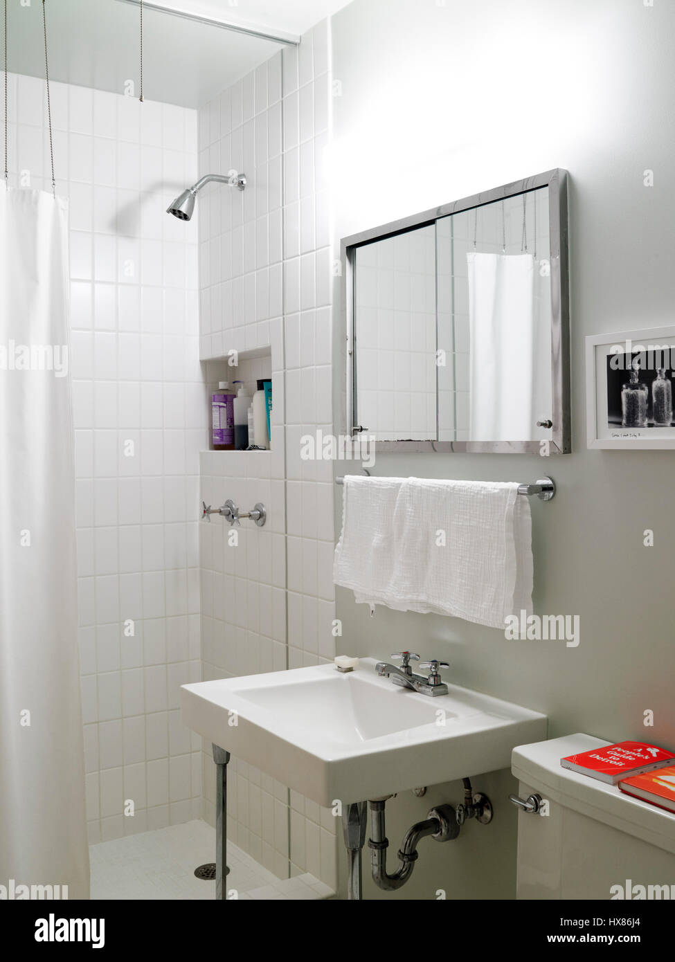 Blick auf das master-Badezimmer. Lafayette Park Stadthaus, Detroit ...