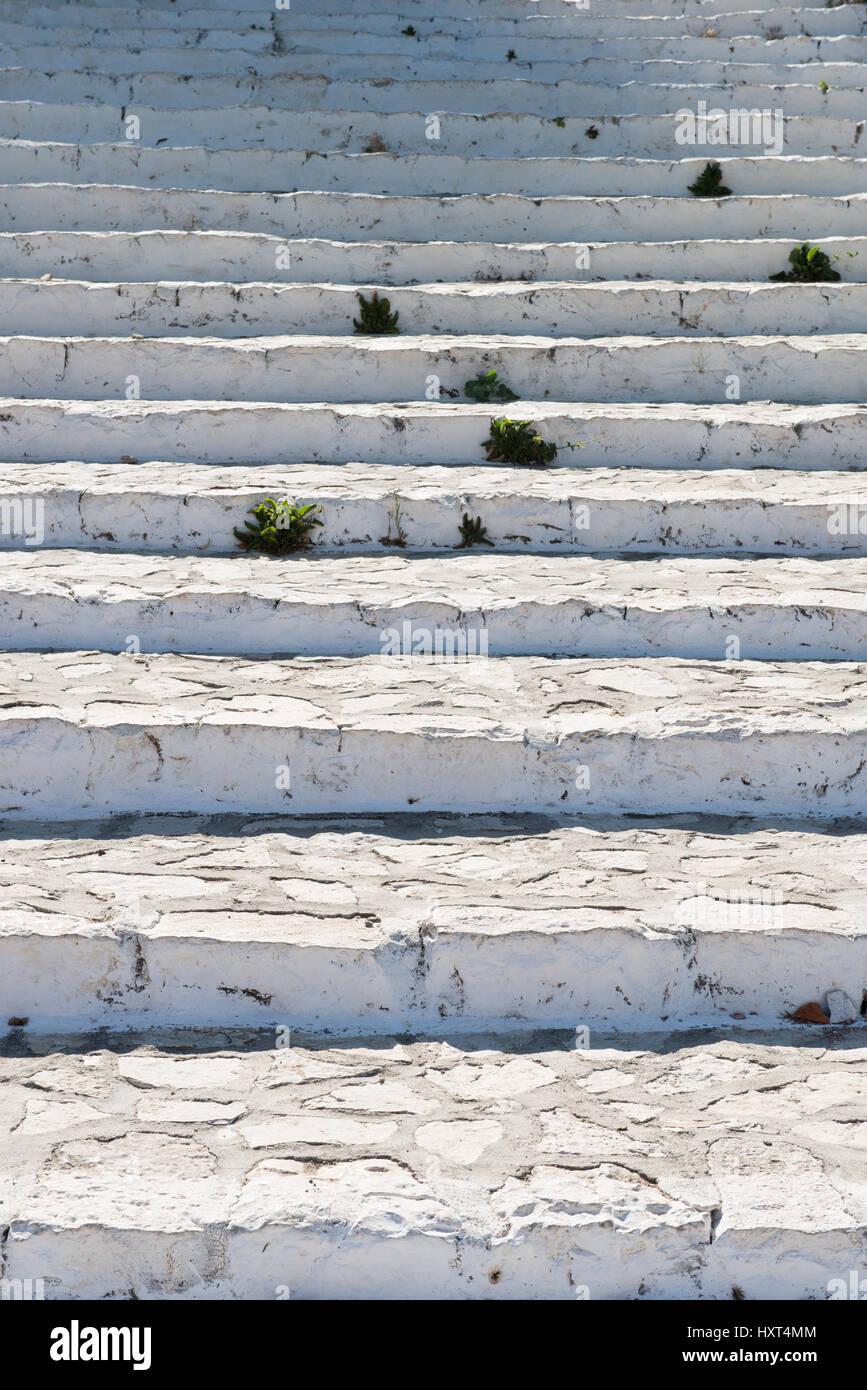 Antike Weißgestrichene Steintreppe Mit Einzelnen Grasbüscheln, Insel Kastellorizo, Dodekanes, Griechenland Stockbild