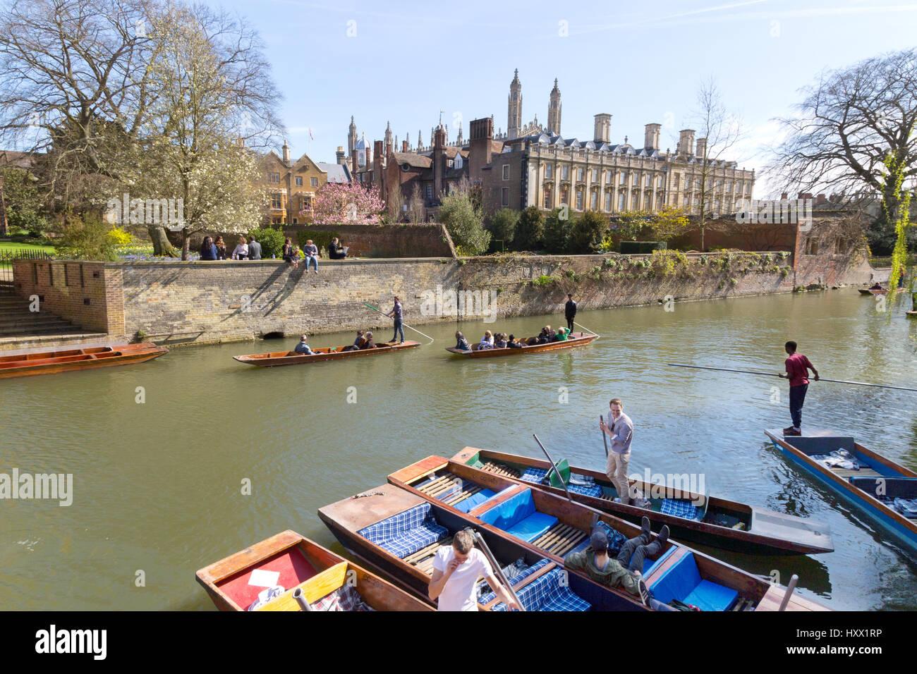 Cambridge UK - Cambridge Stechkahn fahren auf dem Fluss Cam von Trinity Hall und Clare Colleges, die Rücken, Stockbild