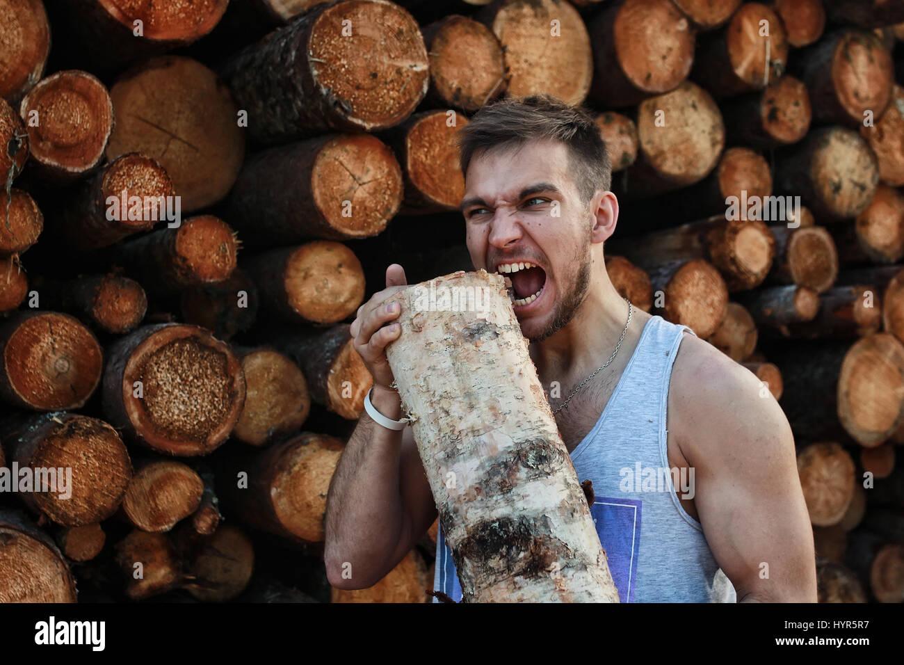 bärtige Person in der Nähe von Holz-Haufen Holz Stockbild