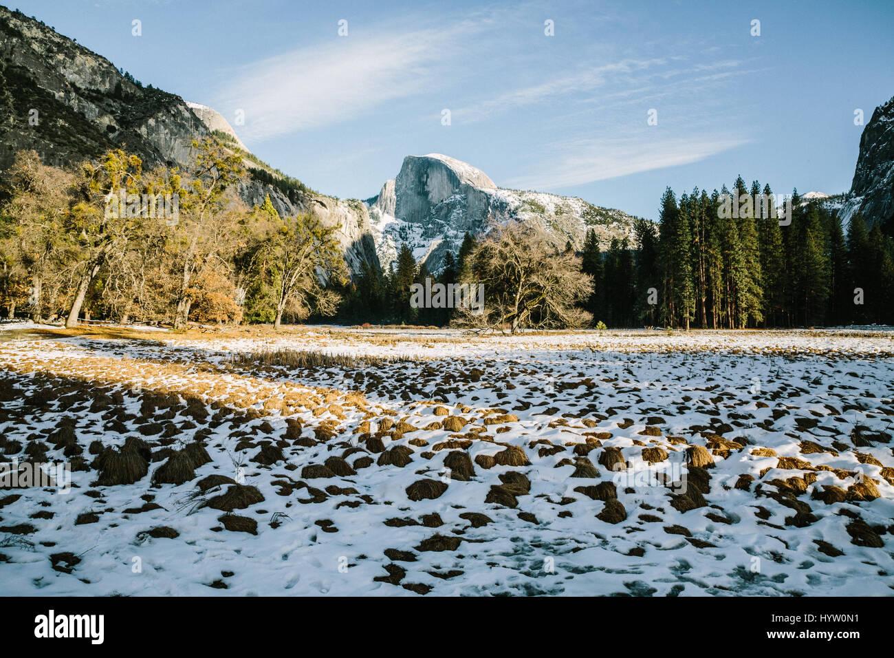 Blick ins Tal des Half Dome im Yosemite, Kalifornien, USA Stockbild
