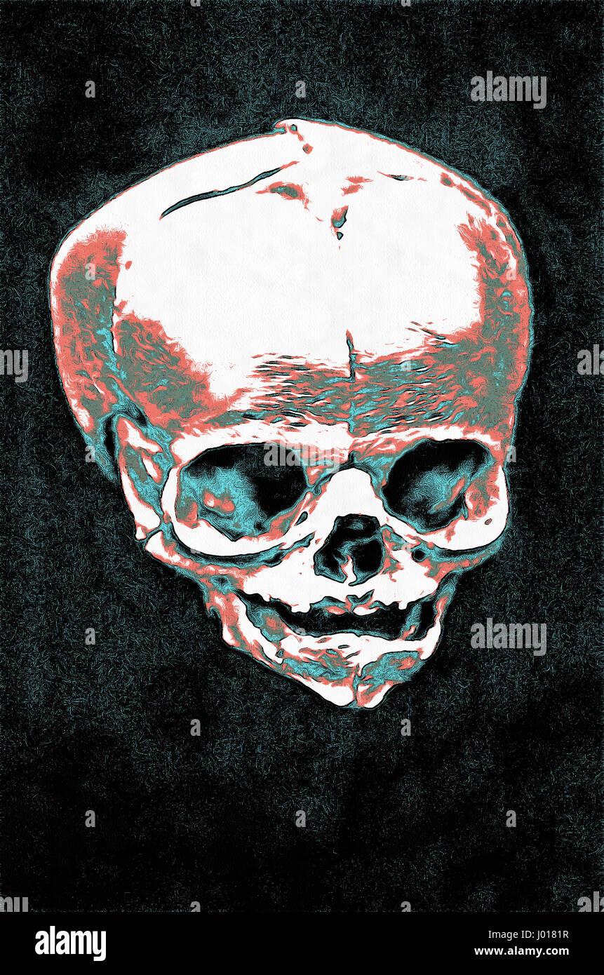 Abbildung eines menschlichen Schädel, Skelett, toten Kopf, Malerei ...