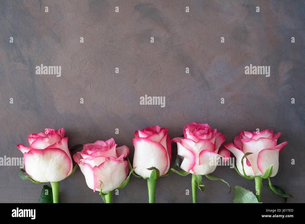 Rahmen mit rosa Rosen. Rosa Rosen-Hintergrund. Mütter Tag ...