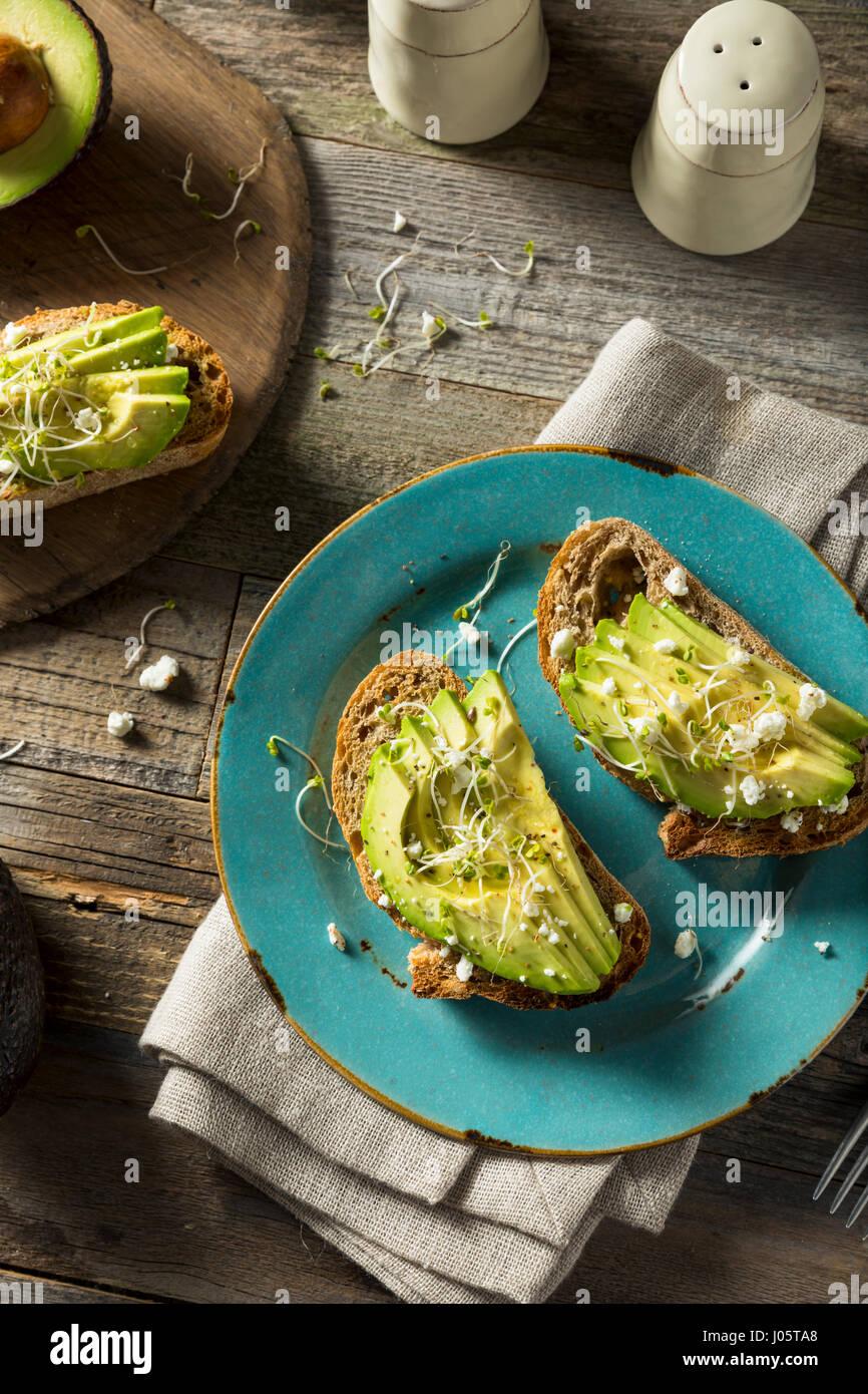 Gesunde hausgemachte Avocado-Toast mit Käse und Sprossen Stockbild
