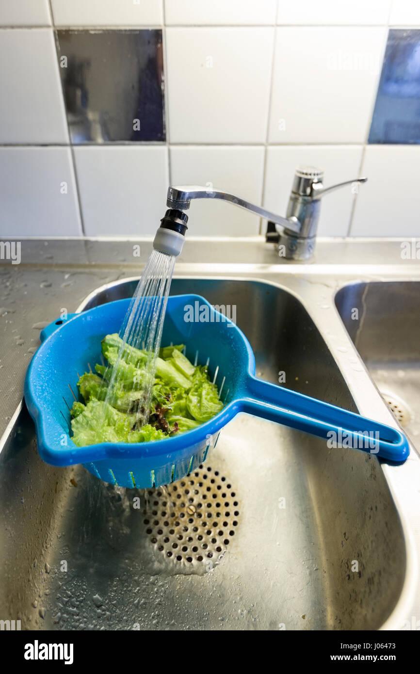 Kunststoff Sieb Oder Cullender Oder Sieb Gefullt Mit Salat Gespult